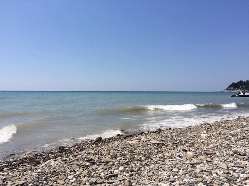 Дикий пляж в хосте фото отзывы